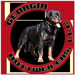 georgia-rottweilers-logo