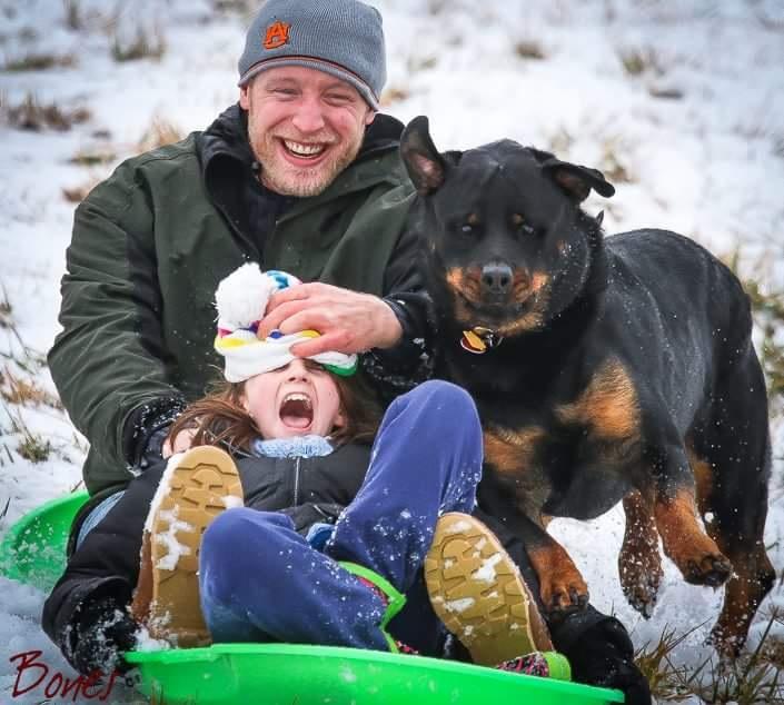 sledding-georgia-rottweilers